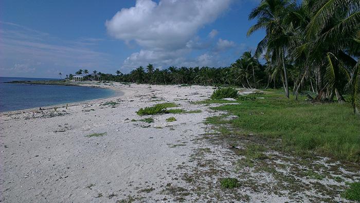 grand-sirenis-riviera-maya-beach5