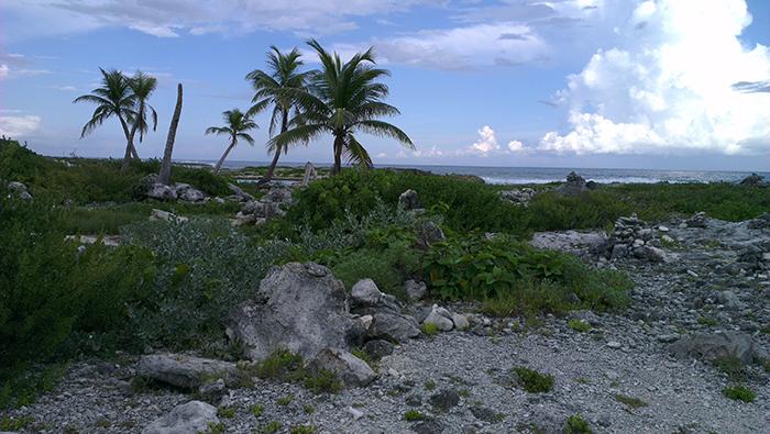 grand-sirenis-riviera-maya-beach6