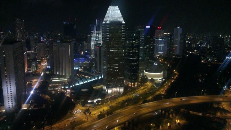 Singapore flier_view1