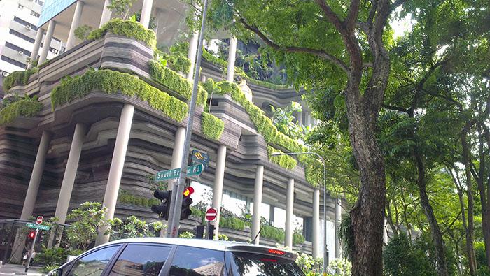Singapore_buildings