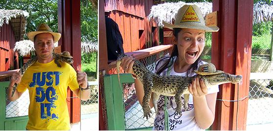 Crocodile farm Cuba