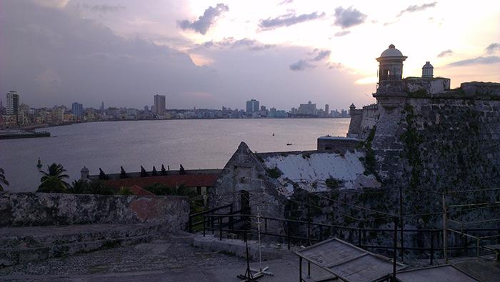 Havana halm 1