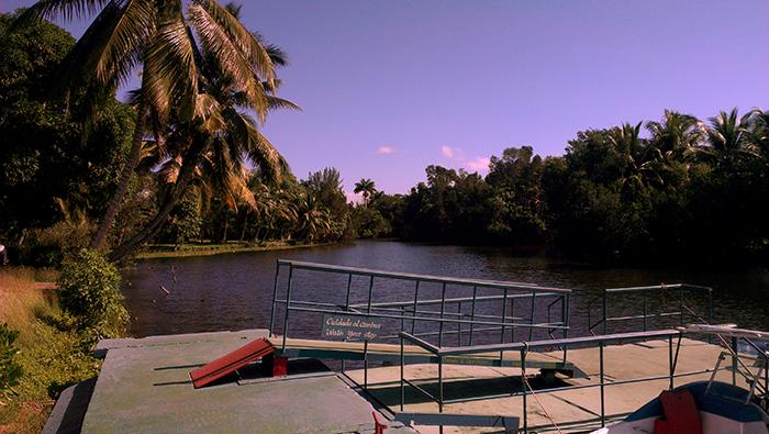Crocodile farm Cuba 1