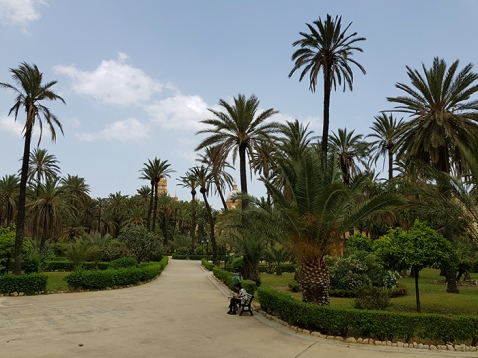 Palermo garden2