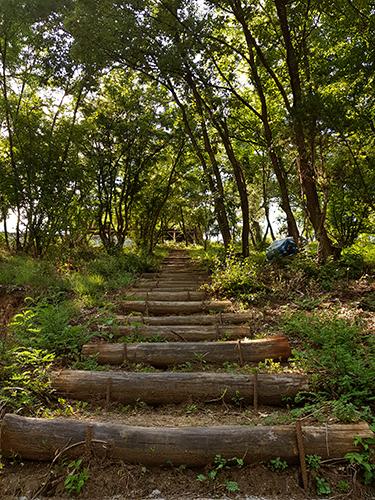 Стълбите към билото, където е вилата