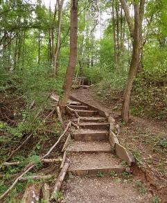 Едни от малкото стълбички по маршрута