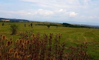 Поглед на запад