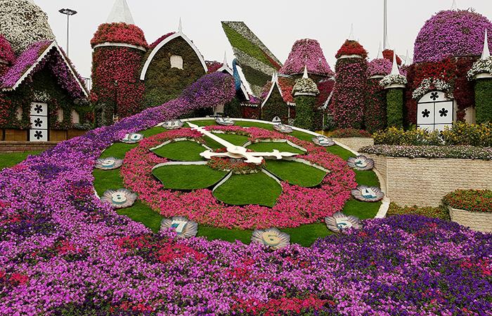 Dubai Miracle Garden_11