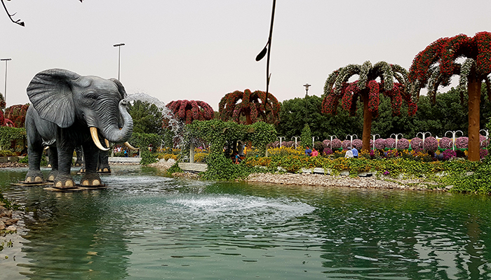 Dubai Miracle Garden_3