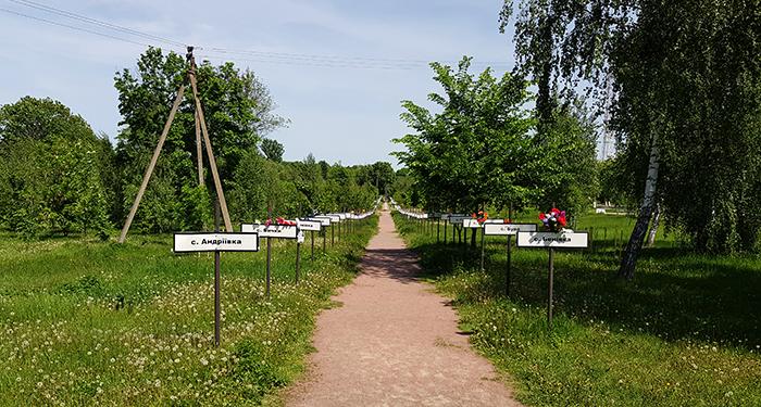 Chernobil cementery1